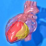 La incapacidad permanente y la cardiopatía isquémica