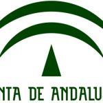 La Renta Mínima de Inserción Social en Andalucía: 419,52 €
